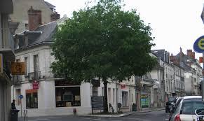 arbre dans une rue